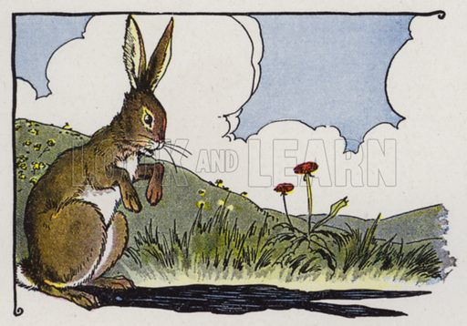 The Hare and His Ears. Illustration for The Aesop for Children with pictures by Milo Winter (Rand McNally, 1919).
