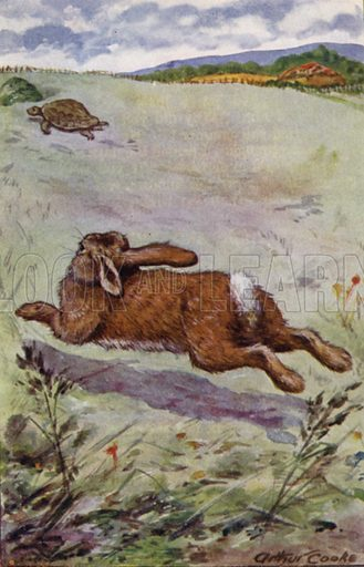 The Hare and the Tortoise. Illustration for Aesop's Fables (Ward Lock, c 1917).
