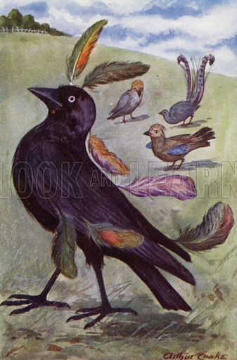 The vain Jackdaw. Illustration for Aesop's Fables (Ward Lock, c 1917).