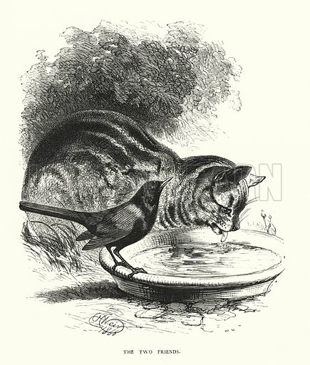 The two friends. Illustration for Animal Sagacity (S W Partridge, c 1866).