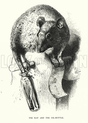 The rat and the oil-bottle. Illustration for Animal Sagacity (S W Partridge, c 1866).