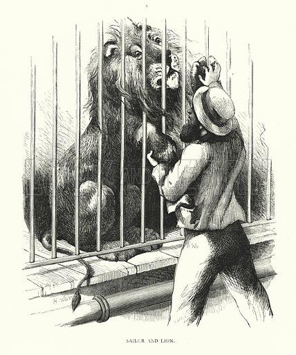 Sailor and lion. Illustration for Animal Sagacity (S W Partridge, c 1866).