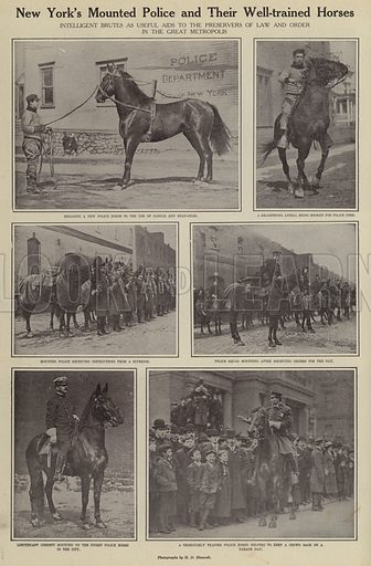 New York's Mounted Police and their well-trained horses. Illustration for Around the World with a Camera (Leslie-Judge Company, 1910).