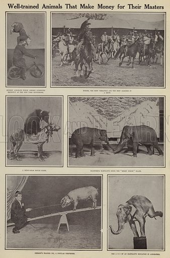Well-trained animals that make money for their masters. Illustration for Around the World with a Camera (Leslie-Judge Company, 1910).