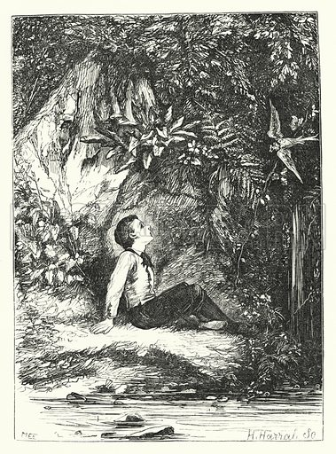 The little bird who told stories. Illustration for Aunt Judy's Magazine, 1866.