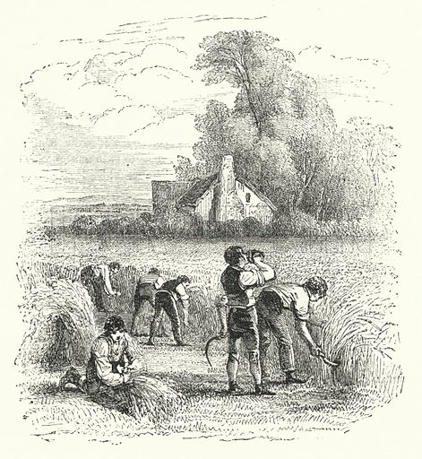 August harvest. Illustration for Aunt Judy's Magazine, 1866.