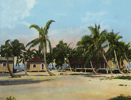 Cottages at Long Key Fishing Camp. Illustration for Beautiful Florida, The Winter Playground of the Nation (Curt Teich, c 1920).