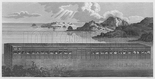 Noah's Ark, Genesis, VII. Illustration for unidentified volume of Bible illustrations, c 1835.