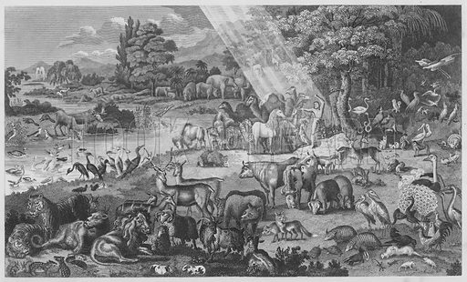 Adam Naming the Creation, Whatsoever Adam called every living Creature that was the Name thereof, Genesis, II, XIX. Illustration for unidentified volume of Bible illustrations, c 1835.