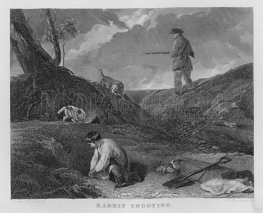 Rabbit Shooting. Illustration for unidentified book of sports, c 1840.