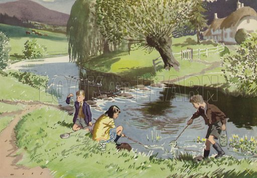 Fishing before bedtime. Illustration for In the Country by E R Boyce (Macmillan, c 1950).