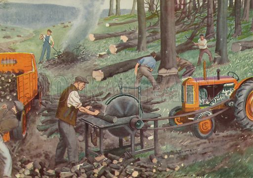 At work in the woods. Illustration for In the Country by E R Boyce (Macmillan, c 1950).