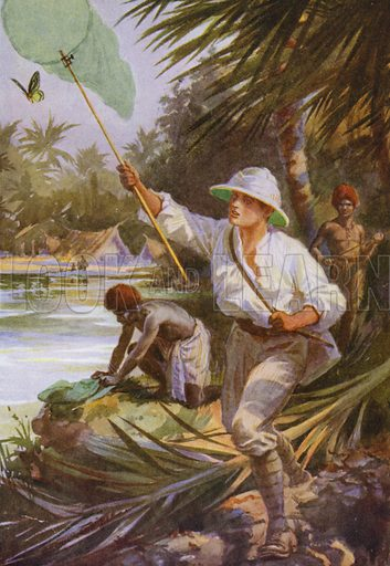 A collector at work in New Guinea. Illustration for Beautiful Butterflies of the Tropics and How to Collect Them by Arthur Twidle (RTS, 1920).
