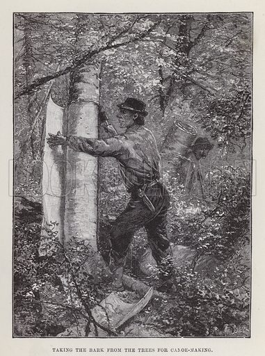 Taking the bark from the trees for canoe-making. Illustration for By Canoe and Dog-Train among the Cree and Salteaux Indians by Egerton Ryerson Young (Charles H Kelly, 1890).