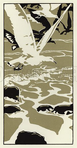 From the beach came a large white sea gull. Illustration for Canadian Wonder Tales by Cyrus Macmillan (John Lane, The Bodley Head, 1918).