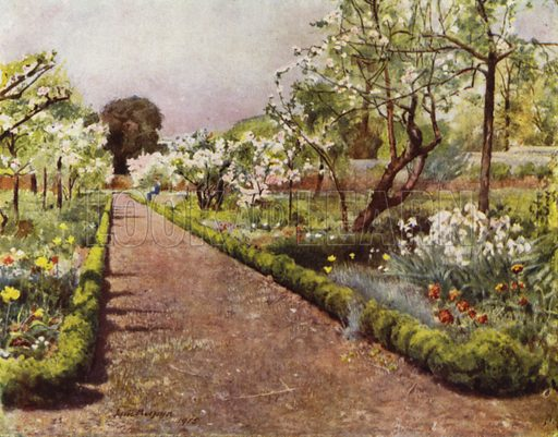Fulham, The Flower Walk in the Walled Garden. Illustration for Gardens of Celebrities and Celebrated Gardens in and around London by Jessie Macgregor (Hutchinson, c 1918).