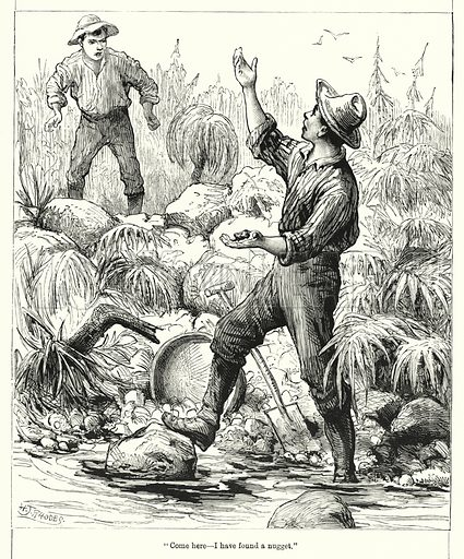 """""""Come here, I have found a nugget."""" Illustration for Chatterbox (1901). Publication made up mainly of earlier illustrations."""