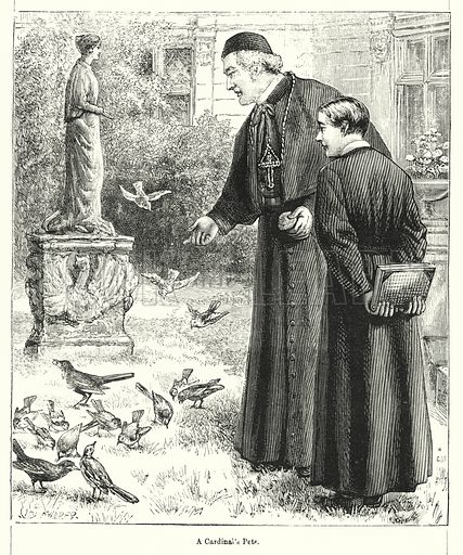 A Cardinal's Pets. Illustration for Chatterbox (1901). Publication made up mainly of earlier illustrations.