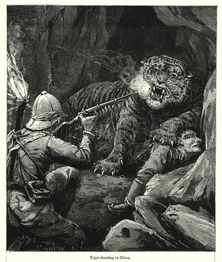Tiger-shooting in China. Illustration for Chatterbox (1901). Publication made up mainly of earlier illustrations.