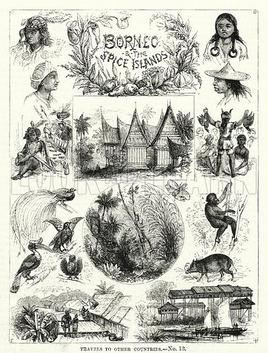 Borneo and the Spice Islands. Illustration for The Children's Friend (1881).
