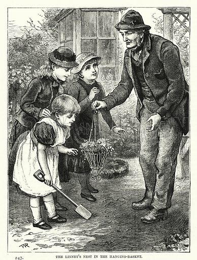 The Linnet's Nest in the Hanging-Basket. Illustration for The Children's Friend (1881).