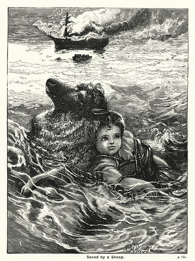 Saved by a Sheep. Illustration for The Children's Friend (1888).