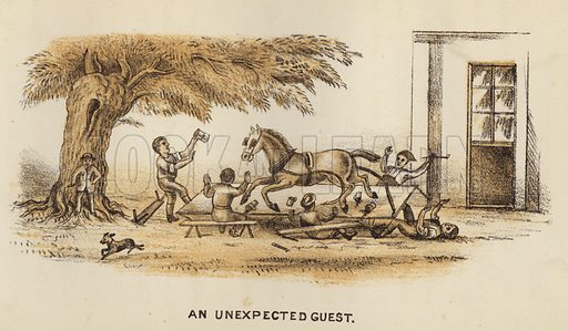 An Unexpected Guest. Illustration for Road Scrapings, Coaches and Coaching by M E Haworth (Tinsley, 1882).