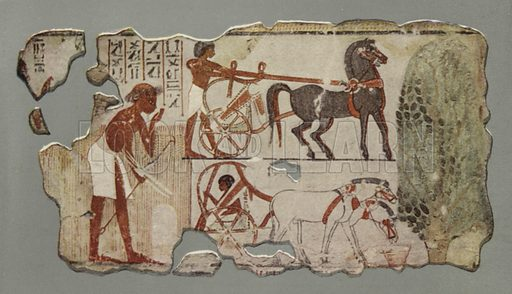 A charioteer about to mount his chariot. A charioteer resting in his chariot whilst his horses are feeding. An official drinking water. British Museum, Third Egyptian Room. From wall-painting in a tomb at Thebes. XVIIIth Dynasty. Illustration for Wall Decorations of Egyptian Tombs illustrated from examples in the British Museum (British Museum, 1914).