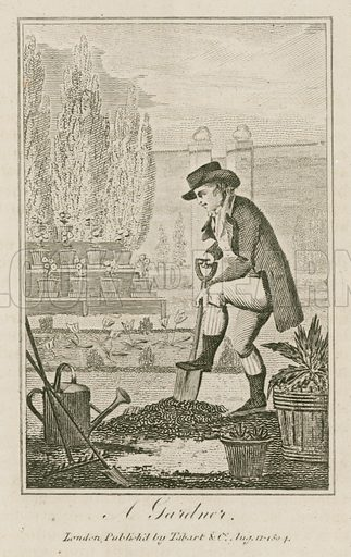 A Gardner. Illustration for The Book of English Trades and Library of the Useful Arts (new edn, J Souter, 1818).