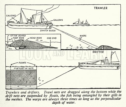 Trawlers and drifters. Illustration for General Knowledge Course (Odhams, c 1945).