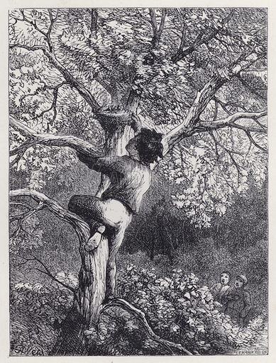 Taking the Linnets' Nest. Illustration for The History of the Robins by Mrs Trimmer (Griffith and Farran, 1869).