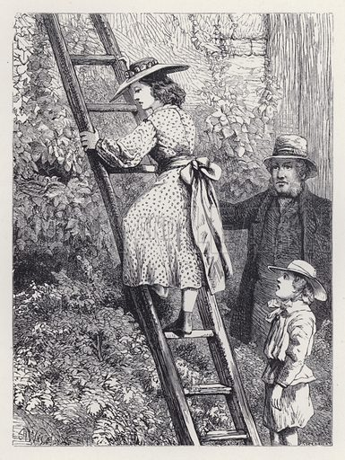 Harriet Peeps at the Robins' Nest. Illustration for The History of the Robins by Mrs Trimmer (Griffith and Farran, 1869).