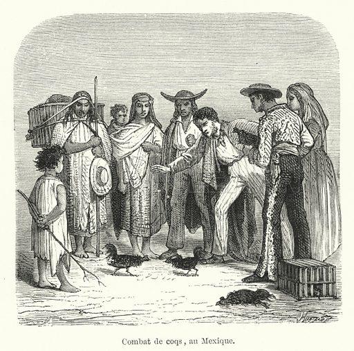 Combat de coqs, au Mexique. Illustration for Dictionnaire du Theatre by Arthur Pougin (Alcide Picard et Kaan, 1884).