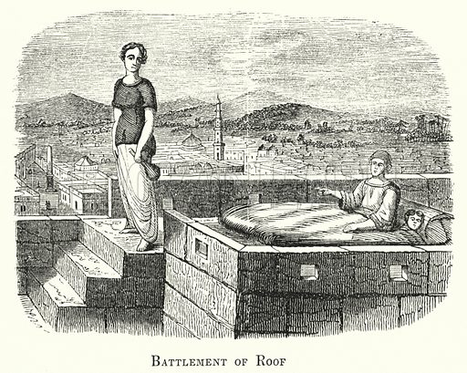 Battlement of Roof. Illustration for Youth's Illustrated Bible History by D W Thomson (National Publishing Co, 1869).
