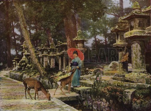 Nara, the Heart of Old Japan. Illustration for In Lotus-Land Japan by Herbert G Ponting (new and rev edn, 1922).