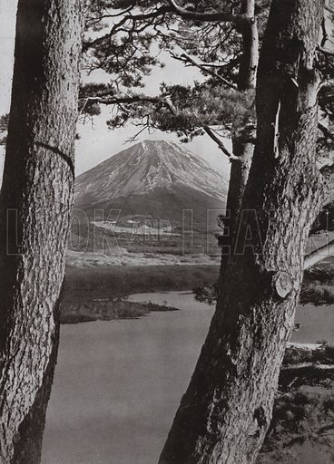 Fuji and the Pine Trees. Illustration for In Lotus-Land Japan by Herbert G Ponting (new and rev edn, 1922).