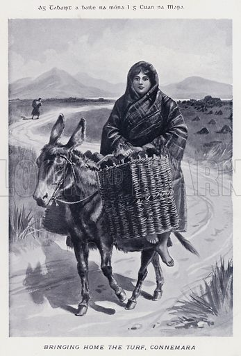 Bringing Home the Turf, Connemara. Illustration for Types of Irish Life and Character by William Lawrence, Photographer, Dublin (Emerald Isle Album Co, c 1895).