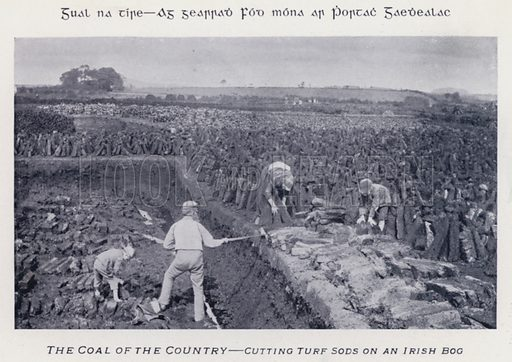 The Coal of the Country, Cutting Turf Sods on an Irish Bog. Illustration for Types of Irish Life and Character by William Lawrence, Photographer, Dublin (Emerald Isle Album Co, c 1895).