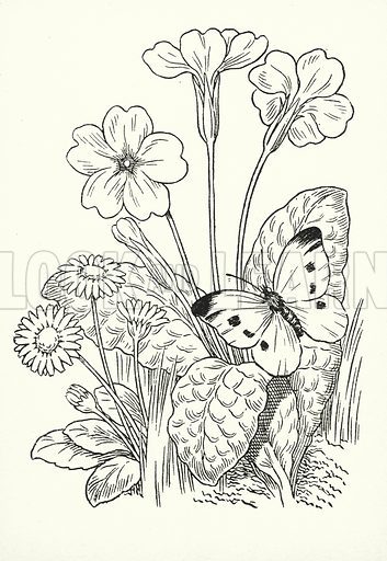 April brings the primrose sweet, / Scatters daisies at our feet. Illustration for A Little Book of Knowledge for Little-Folks illustrated by Percy Billinghurst (Sands, c 1910).