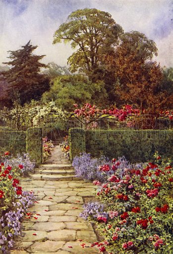 The Rose Walk. Illustration for Landscape Gardening, Planning, Constructing, Planting by Richard Sudell (Ward Lock, c 1933).