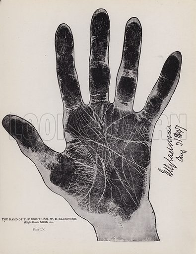 The hand of the Right Hon W E Gladstone. Illustration for Cheiro's Language of the Hand (14th edn, Nichols, and Rand McNally, 1910).  This work was originally published in 1897. William John Warner (also known as Count Louis Hamon), popularly known as Cheiro (1866-1936) was an Irish astrologer and palmist.