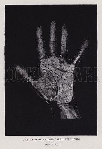 The hand of Madame Sarah Bernhardt. Illustration for Cheiro's Language of the Hand (14th edn, Nichols, and Rand McNally, 1910).  This work was originally published in 1897. William John Warner (also known as Count Louis Hamon), popularly known as Cheiro (1866-1936) was an Irish astrologer and palmist.
