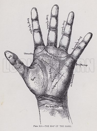 The map of the hand. Illustration for Cheiro's Language of the Hand (14th edn, Nichols, and Rand McNally, 1910).  This work was originally published in 1897. William John Warner (also known as Count Louis Hamon), popularly known as Cheiro (1866-1936) was an Irish astrologer and palmist.
