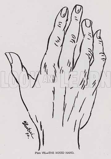 The mixed hand. Illustration for Cheiro's Language of the Hand (14th edn, Nichols, and Rand McNally, 1910).  This work was originally published in 1897. William John Warner (also known as Count Louis Hamon), popularly known as Cheiro (1866-1936) was an Irish astrologer and palmist.  Illustrations by Theo Dore.