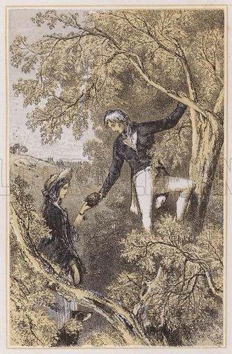 Nelson birds'-nesting with his wife. Illustration for The Life of Nelson by Robert Southey (new edn, Bell and Daldy, 1866).
