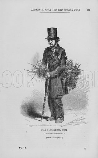 The Groundsel Man. Illustration for London Labour and the London Poor by Henry Mayhew (Charles Griffin, c 1865).