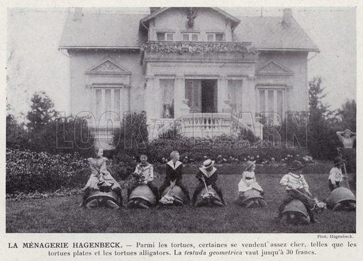 La Menagerie Hagenbeck. Illustration for L'Allemagne Moderne by Jules Huret (Pierre Lafitte, 1913).