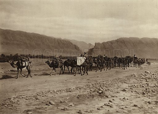 El-Kantara Oasis, Passing caravan. Illustration for Picturesque North Africa (Jarrolds, c 1925).  First published by Ernst Wasmuth, Berlin, 1925.  Gravure-printed. Photo credit: Lehnert and Landrock, Cairo.