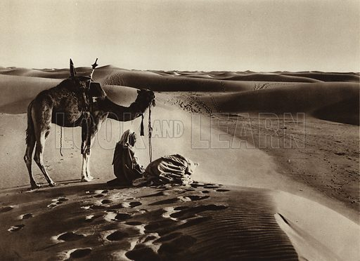 Worshipping in the desert. Illustration for Picturesque North Africa (Jarrolds, c 1925).  First published by Ernst Wasmuth, Berlin, 1925.  Gravure-printed. Photo credit: Lehnert and Landrock, Cairo.