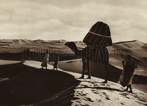 Transport of women through the Sahara. Illustration for Picturesque North Africa (Jarrolds, c 1925).  First published by Ernst Wasmuth, Berlin, 1925.  Gravure-printed. Photo credit: Lehnert and Landrock, Cairo.